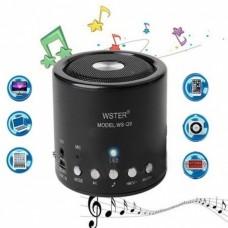 Ασύρματο Wireless/USB/Radio/MP3/AUX μίνι ηχείο WS-Q9
